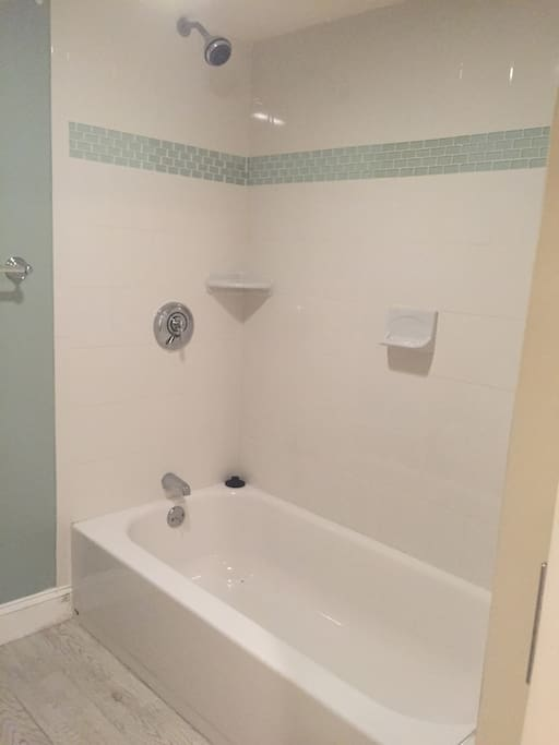 Newly Renovated Bath and Shower