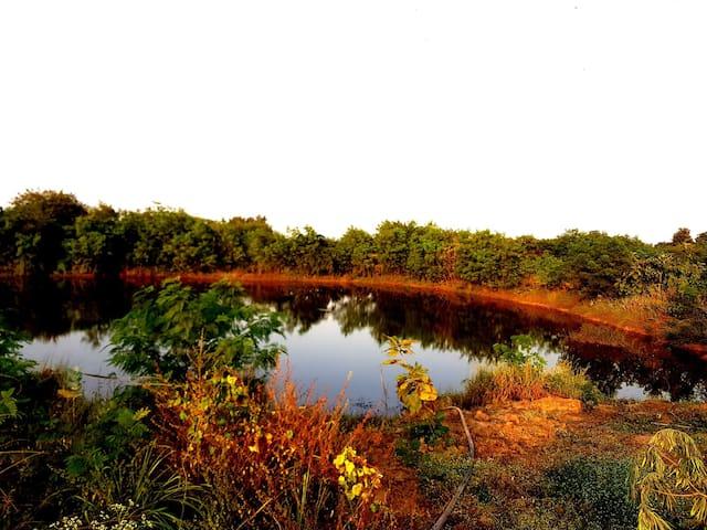 TAO GARDEN farms,fishing,treehouse & tranquillity