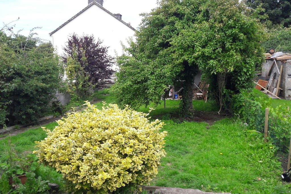 a big garden to enjoy the sunshine