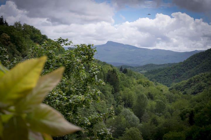 Canto del Fiume Raggiolo Toscana. Intera struttura