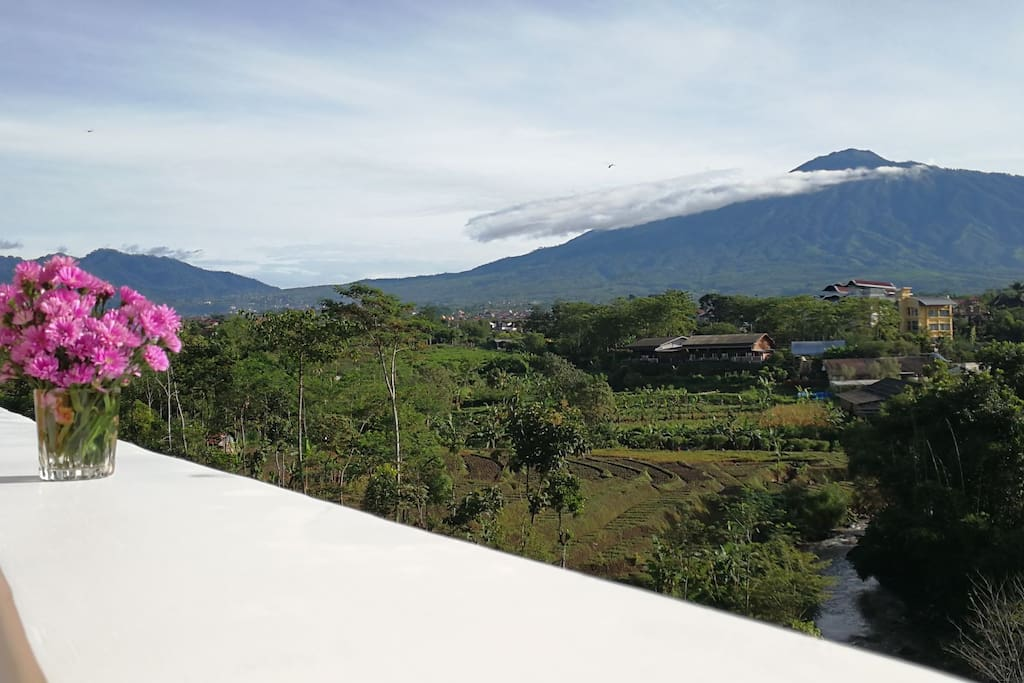 Mt. Arjuno from first floor terrace