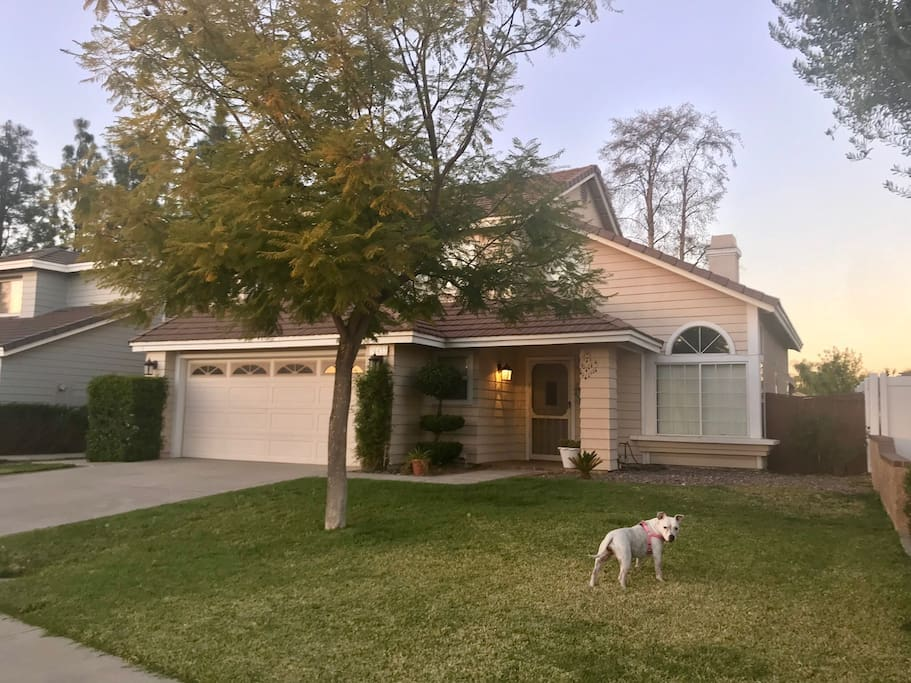 Rooms For Rent Near Menifee Ca