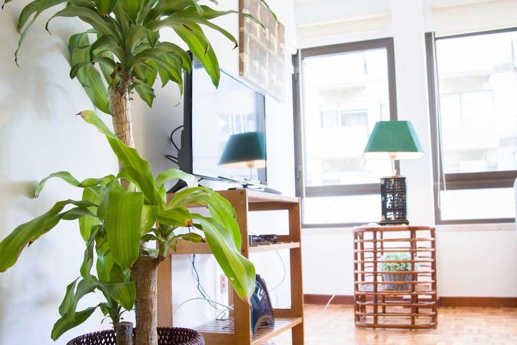 Living room - TV detail