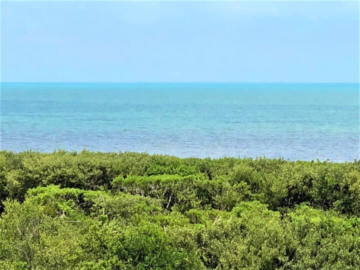 Ocean Vista Luxury Condo