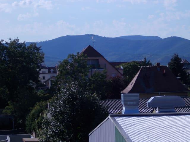 les collines vosgiennes côté ouest