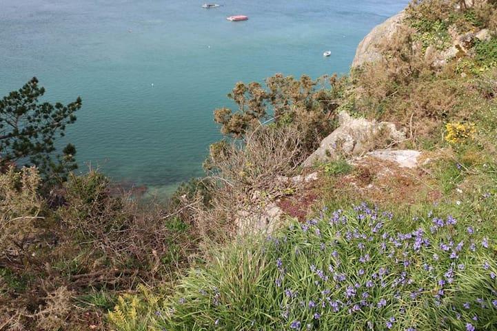 Magnifique promenade à 20 minutes, le long du Trieux : Roche aux Oiseaux!