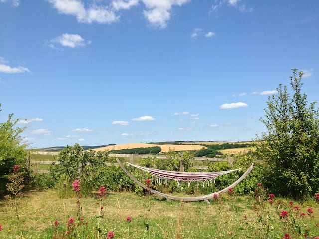 On the South Downs trail with views - Kingston - Hus