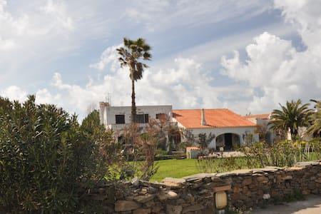 Silent Villa in a paradise garden - Stintino