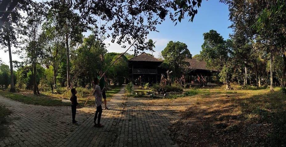 Vuon Thu Guest House Garden - A Peaceful Place