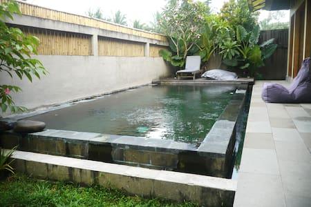 2 Bed Ubud Designer Pool Villa - Ubud