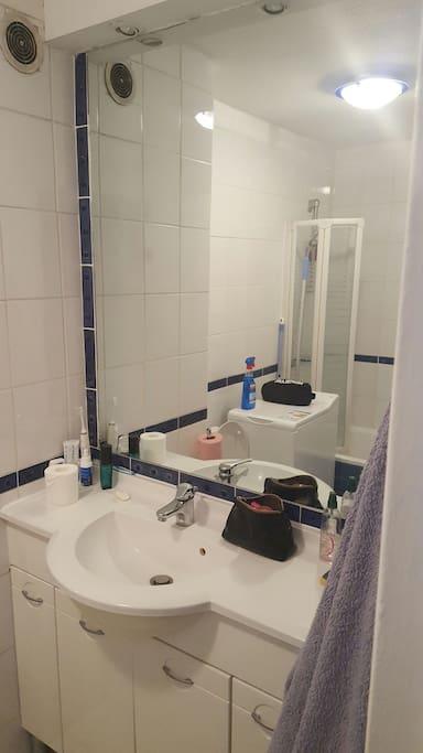 Bathroom/bath/dishwasher