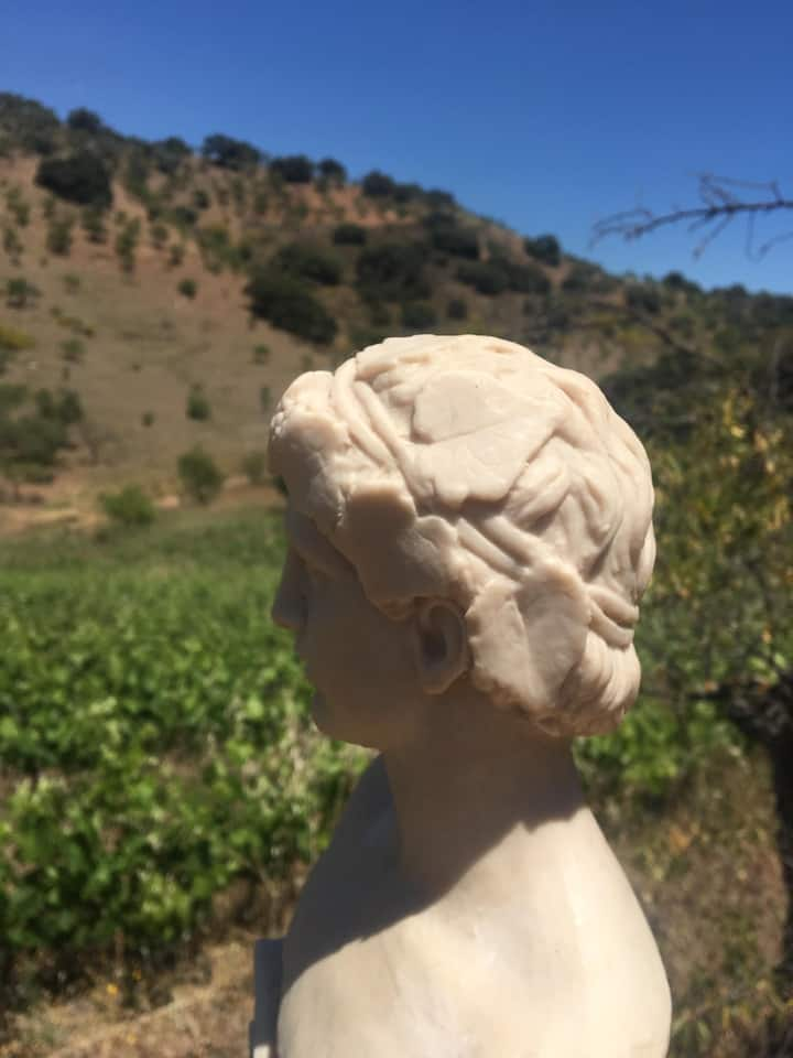 Dionysus, God of Vines, our inspiration