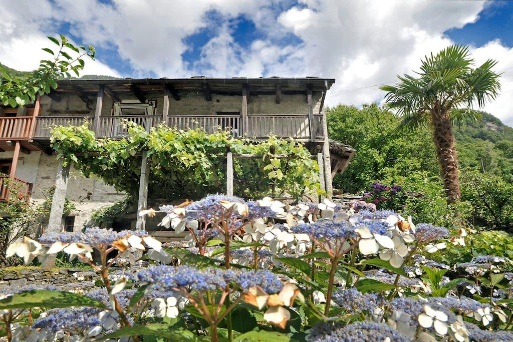 Ansicht vom Garten, mit Sicht auf Pergola und Balkon