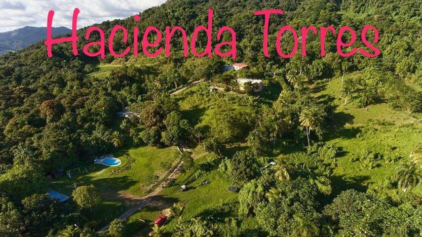 Hacienda Torres Paradise of Nature - Villa Limon