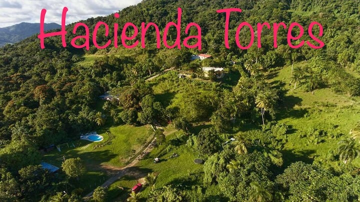 Hacienda Torres Paradise of Nature - Villa Limon