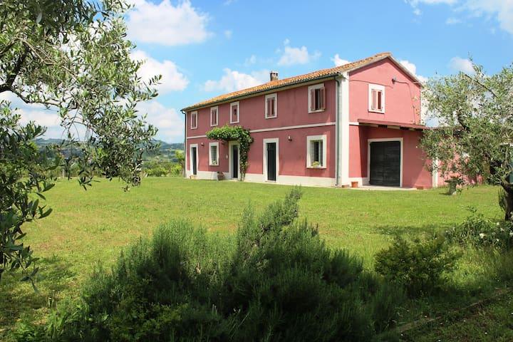 A beautiful farmhouse near the sea