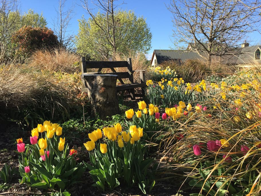 Garden Seat in Spring