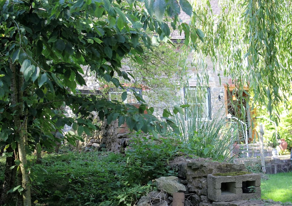 The Garden outside in Summer