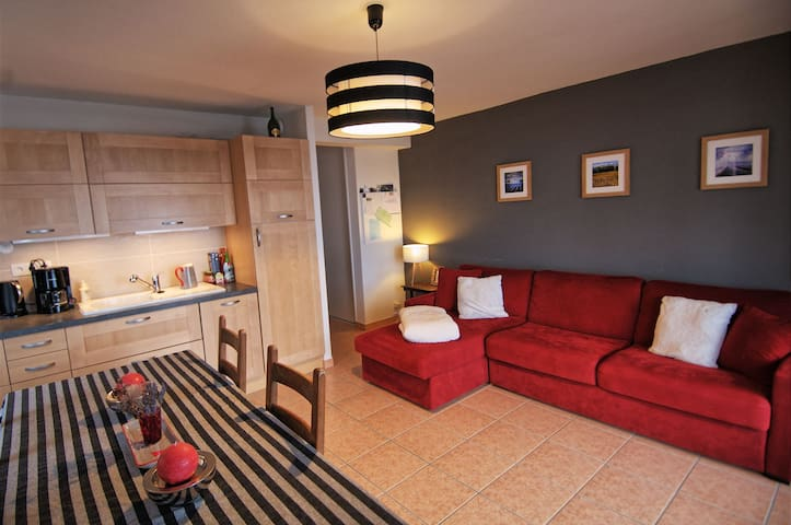 Magnifique Appartement dans chalet - Laye