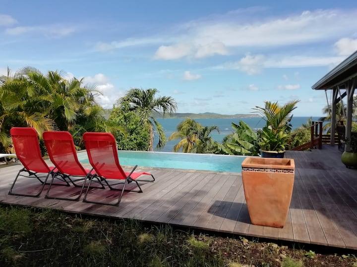 Villa avec piscine à débordement et vue mer