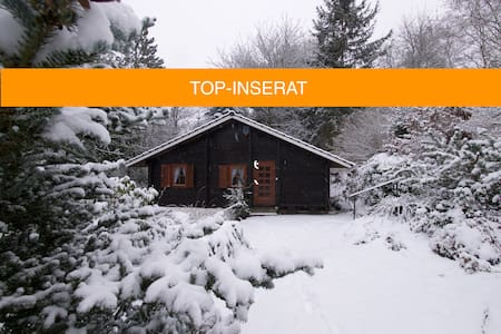 Urige Blockhaushütte im waldreichen Taunusgebiet - Waldsolms