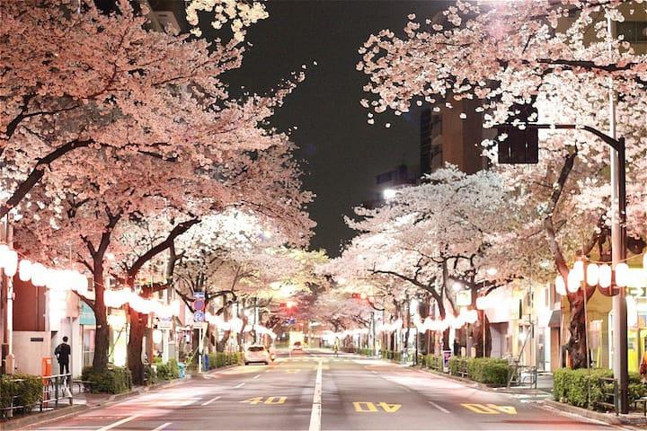 Tokyo 1sta→Shinjuku near Donkimall TV+WiFi+Int! - Nakano-ku - Leilighet