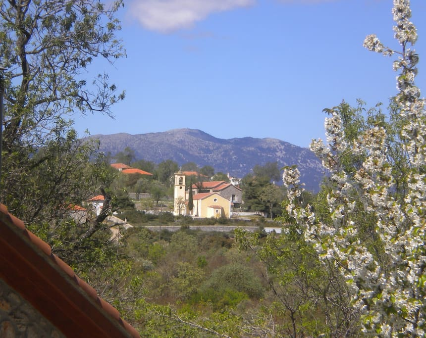The village Amygdalia  in the Spring. The view from the house.