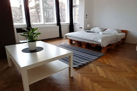 Specious bright room 15 minutes from city center