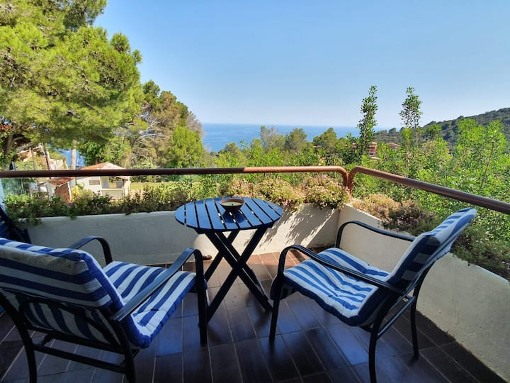 Sunny studio with swimming pool in Begur