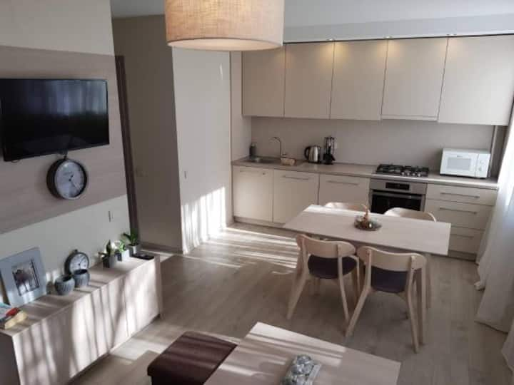 Apartament Vilniaus Street