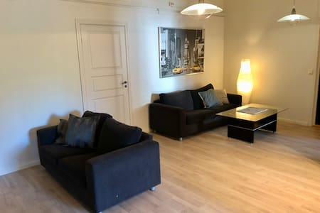 Big and cosy apartment in Voss centrum