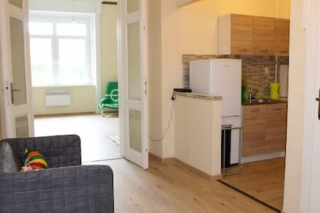 Big 1-room apartment in the center. Just renovated - Appartement
