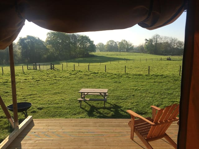 Luxury Glamping at Gambledown Farm, Hampshire (2)
