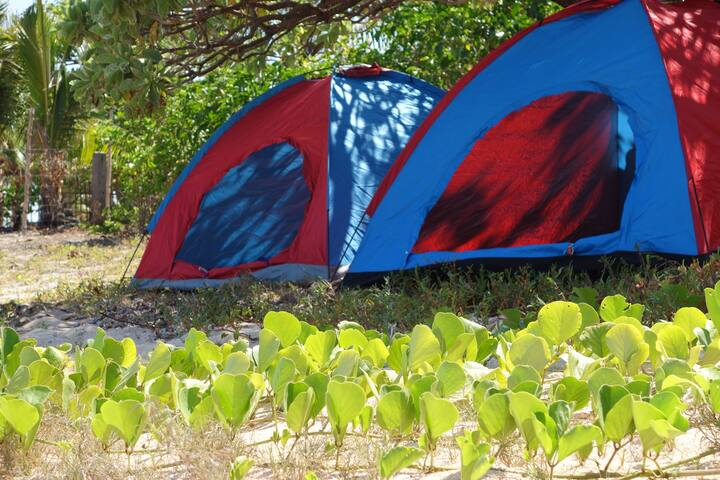 Camping Tents at the White Sand Coral Beach - PH - Палатка