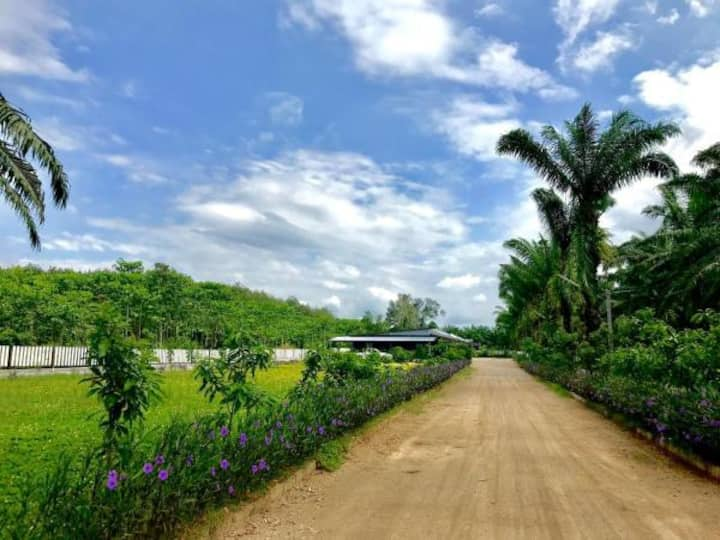 Golden Palm Resort 4
