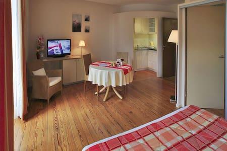 Chambre studio toute équipée - ville - Luxeuil-les-Bains - 公寓