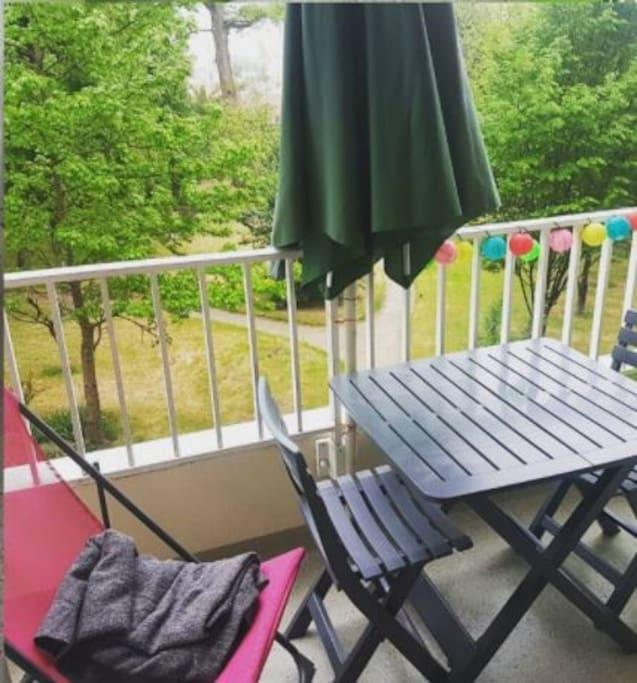Le parc vu du balcon du séjour