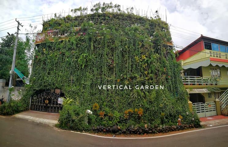 Vertical garden, guest house and backpacker hostel