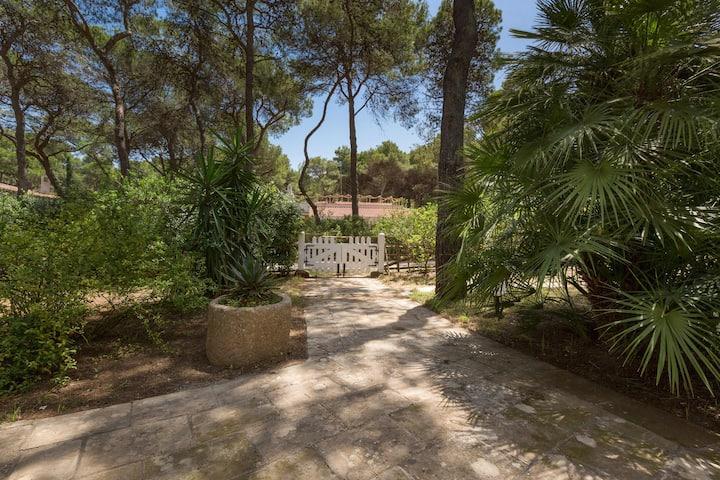 1634 Villa Denise