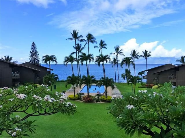 Ocean View - Mahina Surf 214 (Two Bedroom Two Bath Oceanfront) - Napili-Honokowai - Apartment