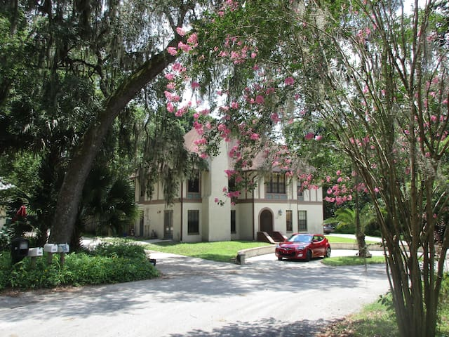 Swiss-Floridian BnB $49 w.hot breakfast n. Stetson - DeLand - Bed & Breakfast