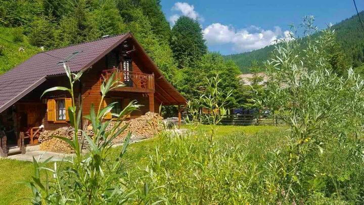 Dreamy Cabin in the Heart of Romania