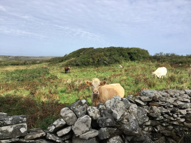 Minutes to Doolin, Sea Views, Perfect Privacy.