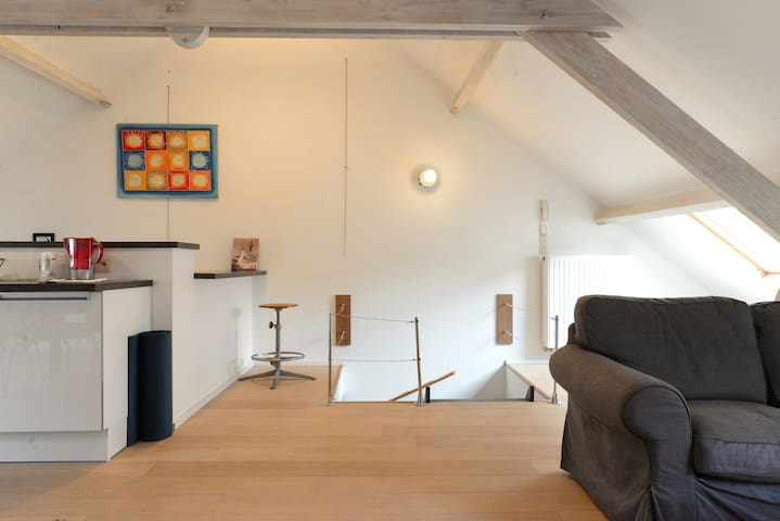 Le Chartreux - Duplex in the heart of Brussels - Bruxelles - Departamento