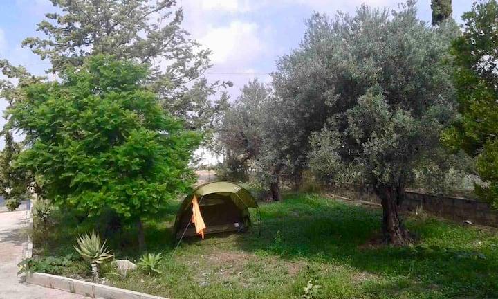 Casa numero 0 Camping tend