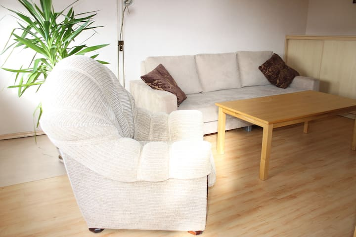 2 ROOM APARTMENT, SPACIOUS AND COSY - Vilnius - Flat