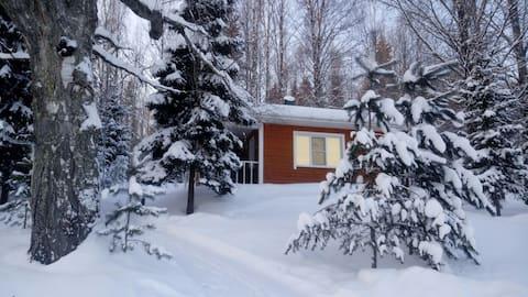 Дом с сауной и камином в Рюттю,Рускеала рядом