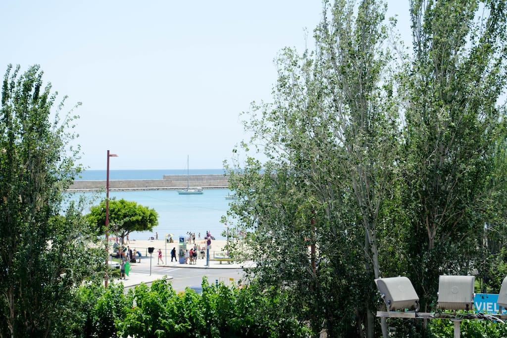 Vistas a la Playa Sur