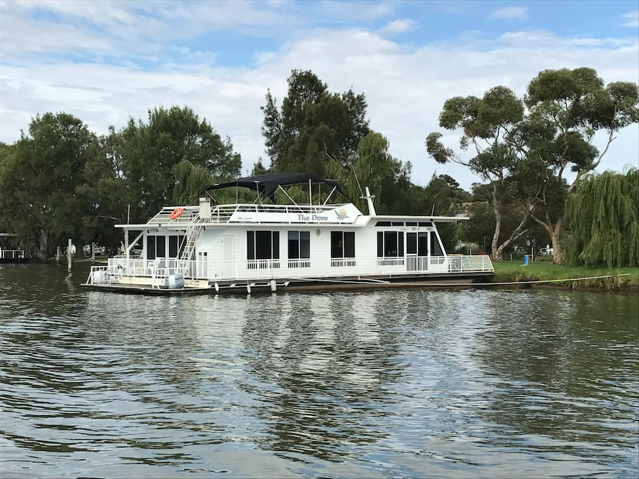 The Dove Houseboat Houseboats For Rent In Woods Point