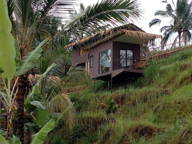 Bali Jatiluwih Angsri rice field terrace room  #3